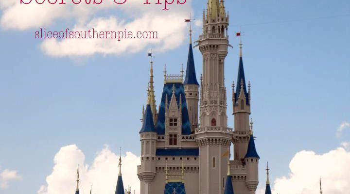 Disney World Secrets & Tips