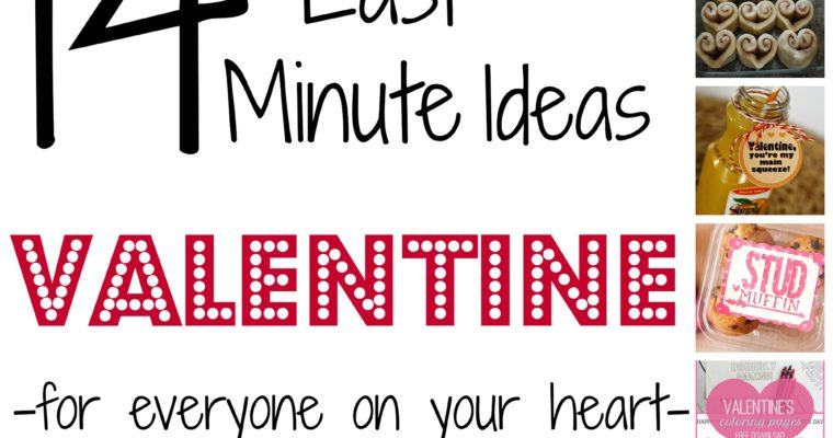 14 Last Minute V-Day Ideas {For Everyone/Everything}