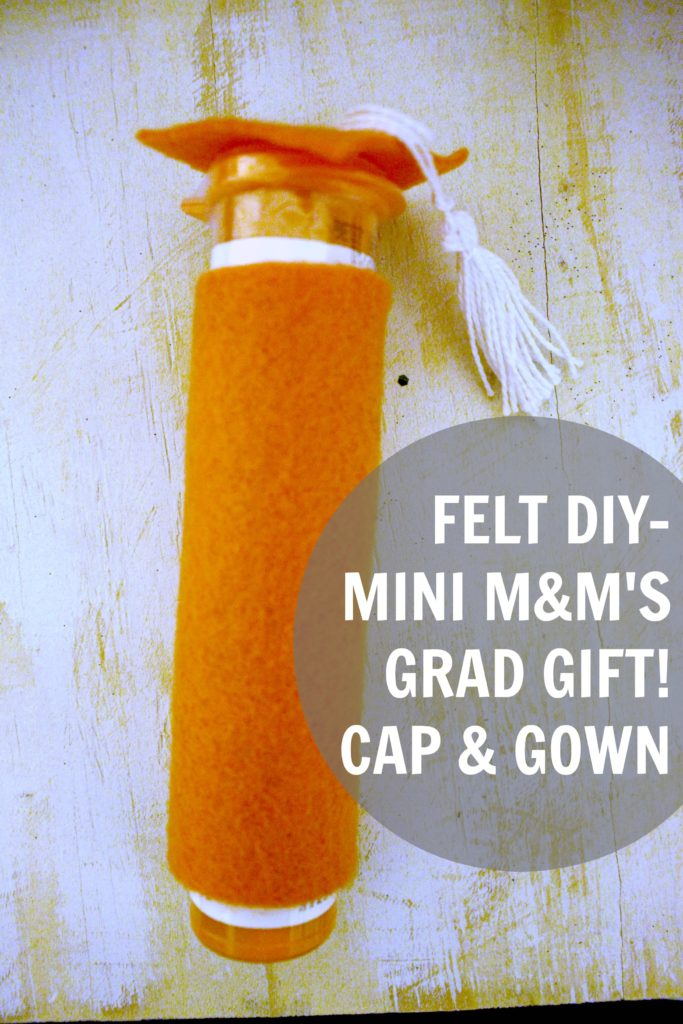 DIY Graduation Candy from M&M's Tubes for Grad Gifts! What a Fun Class Gift or Graduation Party Favor!
