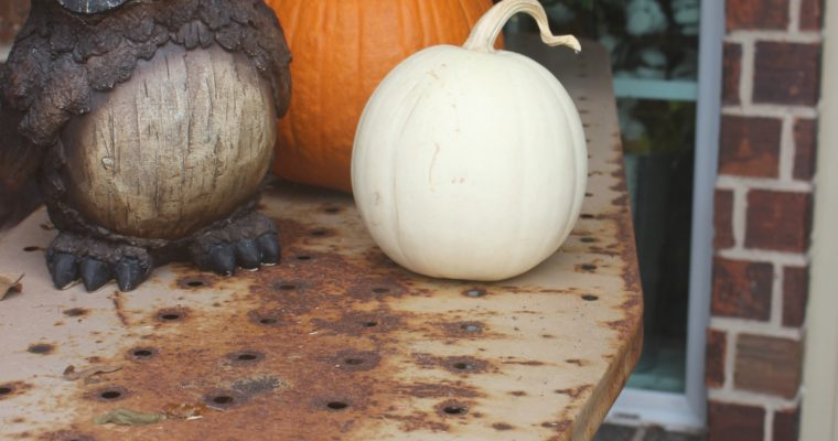 Fall Porch- Pumpkins, Mums & an Owl, Oh My!