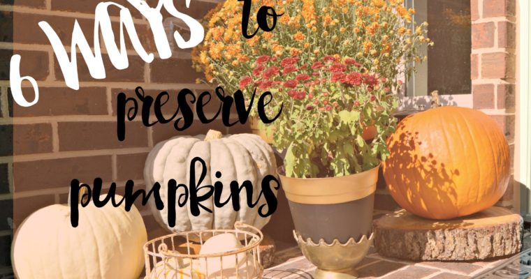 Best Ways to Preserve Pumpkins- Decorative & Carved!