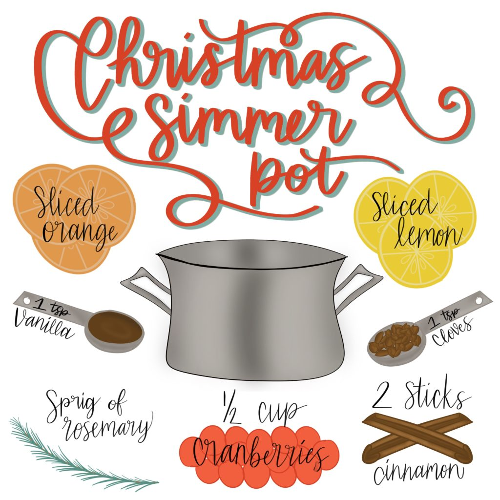 This Christmas Simmer Pot will make your House Smell Like Christmas in No Time! It's also makes a great hostess gift!